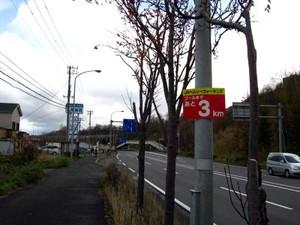 20101113_10021