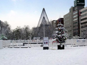 20101130_10002