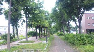20110705_093654