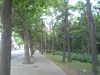 20060901vfsh0039