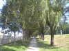 20060924vfsh0019