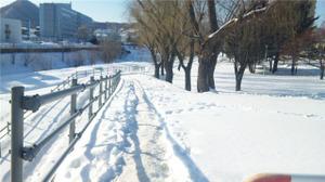 20120120_100512