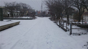 20131213dsc_10002
