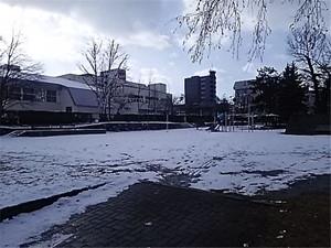 20161129dsc_10001